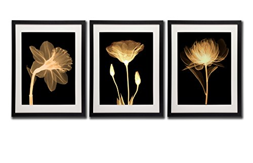Black White And Gold Wall Art Canvas Prints Decor Framed Flowers Painting Poster Printed On Canvas Poppy Flower Pictures 3 Piece Black Frames White Mat Artworks For Home And Offcie Decorations (White Petals Tree Dollar Rose)