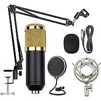 Microfone Condensador Com Braço Articulado Pop Filter P2 T1