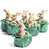 easter table decorations Set of 6 Miniature Resin Bunny in Cabbage Head Figurines - Easter Table Favor Decorations
