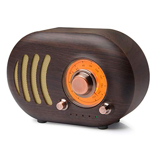 Retro FM Radio, Portable with Bluetooth, Best Reception, Strong Bass Enhancement, Loud Volume, Bluetooth 4.2 Wireless Connection suitable for camping and Travelling