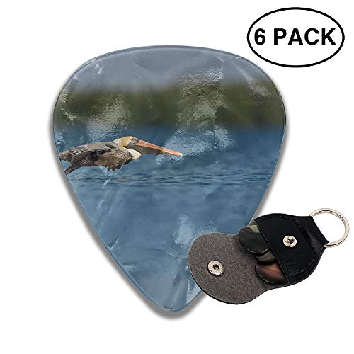 Brown Pelican Flying Blue Lake Small Medium Large 0.46 0.71 0.96mm Mini Flex Assortment Celluloid Top Classic 351 Rock Electric Acoustic Guitar Pick Accessories Variety Pack Collectors