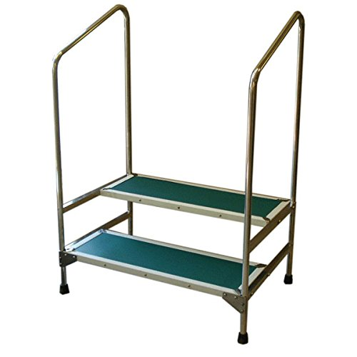 Double Step Stool with 41