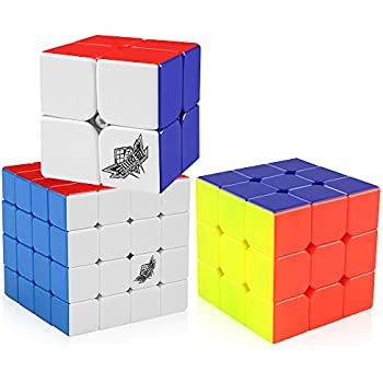D FantiX Cyclone Boys 2x2 3x3 4x4 Speed Cube Set, Stickerless Magic Cube  Puzzles
