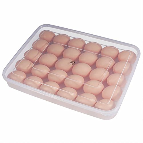 Egg Container, 77L 30 Refrigerator Eggs Container with Lid, Plastic Portable Egg Holder Case - Protect and Keep Fresh, Stackable Large Egg Tray (Clear)