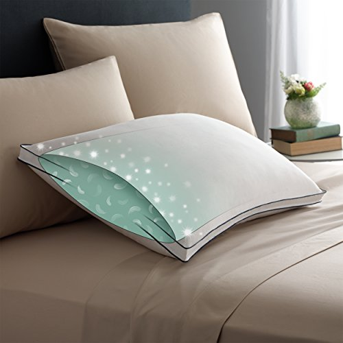Pacific Coast Double DownAround Soft Pillow 300 Thread Count 550 Fill Power Down & Resilia Feathers - - Bed White Pillow Std Down