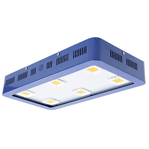 Commercial Greenhouse Led Grow Lights in US - 9