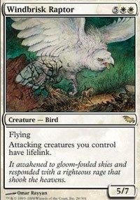 Magic: the Gathering - Windbrisk Raptor - Shadowmoor - Foil