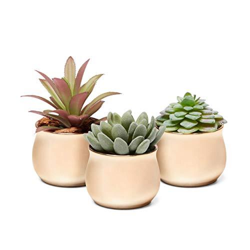 3 Piece Mini Curved Shiny Iridescent Copper Rose Gold Ceramic Succulent Planter Pot Set ()