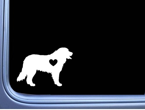 Bernese Mountain Dog Lil Heart L375 6 inch Decal Sticker (Car Mountain Bernese Dog)