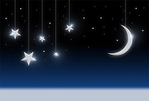 Moonbeam Outdoor Lighting - 4