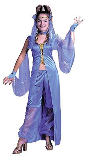 Dreamy Genie Plus Sz Adult Womens Costume ()
