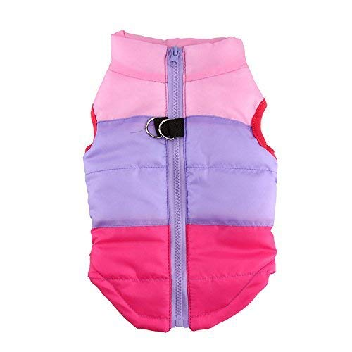 Idepet TM Pet Dog Cat Coat with Leash Anchor Color Patchwork Padded Puppy Vest Teddy Jacket Chihuahua Costumes Pug Clothes XS S M L (M, Rose)