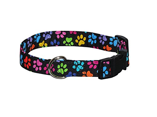 Elmo's Closet Hash Tag Paws Dog Collar (Medium)
