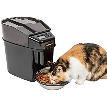 Amazon com : amzdeal Automatic Cat Feeder 6L Pet Feeder Dog
