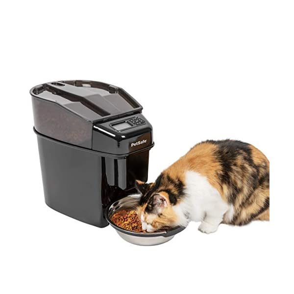 PetSafe Healthy Pet Simply Feed Automatic Pet Feeder, Dispenses Dog Food or Cat Food, Digital Clock