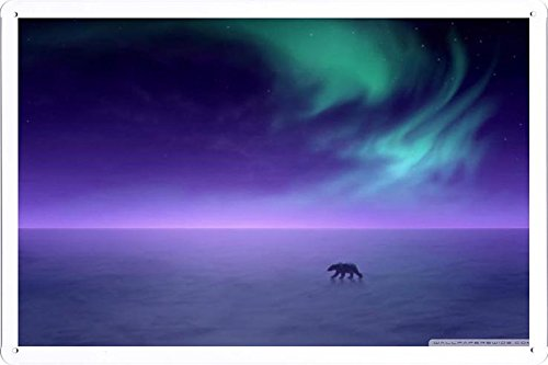 Tin Sign Poster Polar Bear In The Northern Lights (20x30cm) By Nature Scene Painting