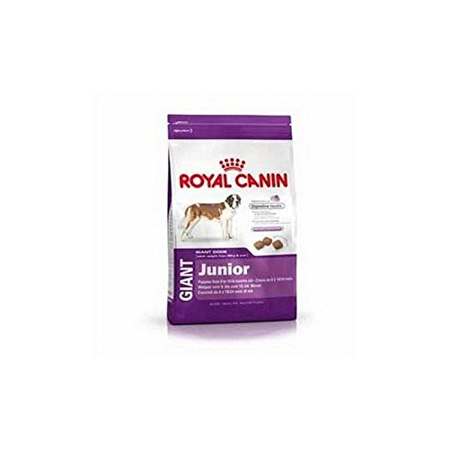 Royal Canin Giant Junior (4kg) (Pack of 6)