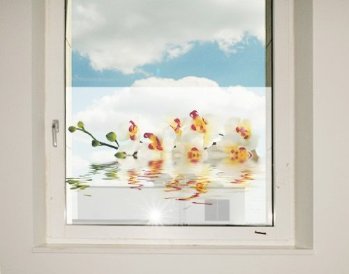 Window Mural Vivid Orchid Waters window sticker window film window tattoo glass sticker window art window décor window decoration Dimensions: 56.7 x 85 inches by PPS. Imaging