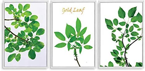 Framed for Living Room Bedroom Green Plants Theme for x3 Panels