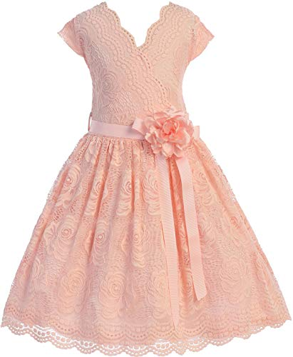 Flower Girl Dress Curly V-Neck Rose Embroidery Allover for Big Girl Blush 16 ()