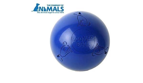 Boomer bola: Amazon.es: Productos para mascotas