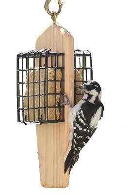 Birds Choice 2-Cake Hanging Suet Feeder