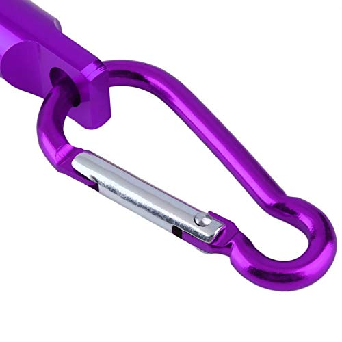 Lila CamKpell Bunte Aluminium Super Bright Mini und Light Pocket Portable Keychain Schl/üsselanh/änger LED Camping Taschenlampe Lampe Licht