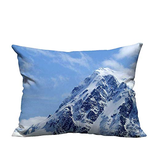 Soaring Squirrel - YouXianHome Zippered Pillow Covers Soaring into The Clouds of Snow Mountains Decorative Couch(Double-Sided Printing) 20x35.5 inch