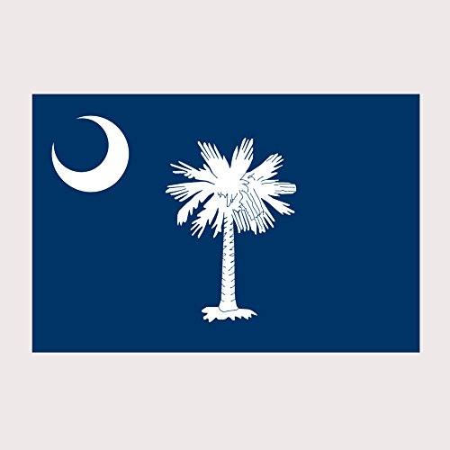 South Carolina Pride State Flag Full Color Two Pack - 2 Inch Decal for Macbook, Laptop or other device