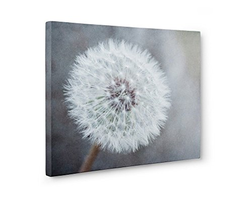 (Large Format Prints, Canvas or Unframed Neutral Floral Wall Decor, 'Dandelion King')