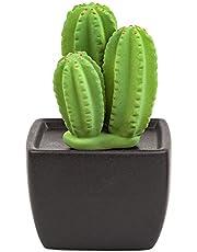Easy_company Ceramic scenting Diffuser for Home Decoration.