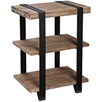 Modesto 2-Shelf Metal Strap and Reclaimed Wood End Table