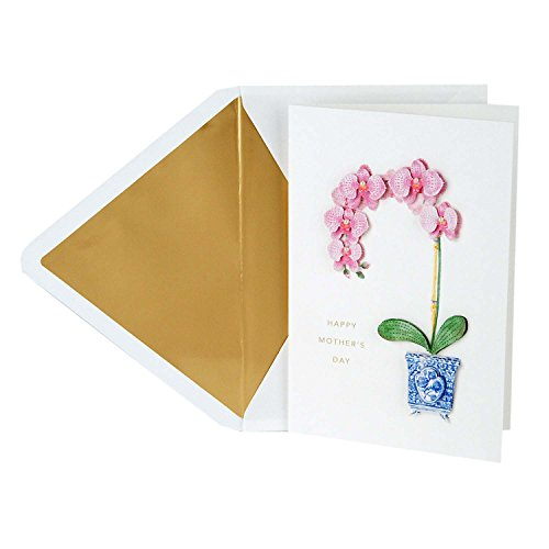 Hallmark Signature Mother's Day Greeting Card (Little Reminder)