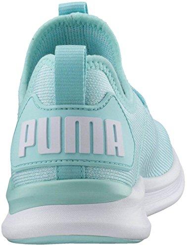 Puma Dames Ontbranden Flash Evoknit Wn Sneaker Island Paradijs-gefluister Wit-puma Wit