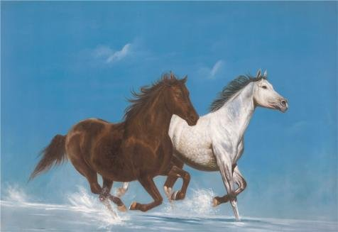 [The Perfect Effect Canvas Of Oil Painting 'Two Horses' ,size: 24x35 Inch / 61x89 Cm ,this Best Price Art Decorative Canvas Prints Is Fit For Dining Room Artwork And Home Gallery Art And] (Safari Guide Costume Uk)