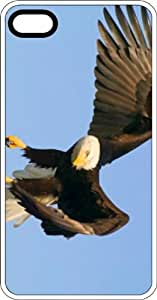 American Bald Eagle In Flight Clear Rubber Case for Apple iPhone 5 or iPhone 5s