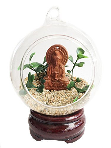 Cabinet Kits Curio (Secret for Longevity Mini Table Top Zen Garden Glass Globe Terrarium Ball w/Buddhist Wooden Buddha Statue Figure Artificial Succulents Sand w/Wooden Base, Stand, Incense Cone Gift Set Kit)
