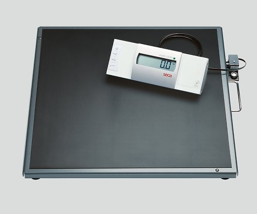seca8-9725-01デジタルワイドプラットホームスケール[検定付]3級seca635 B07BD322HL