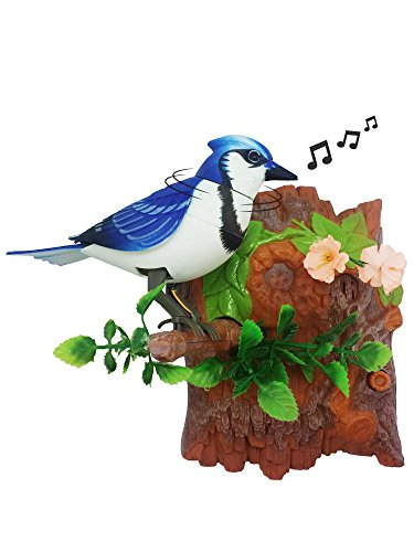 Heat Sensor Chirping Bird with Sweet Sound and Body Move As It Chirps (Vertical, Blue Jay)