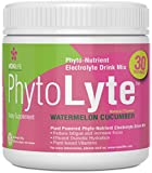Phytolyte Electrolyte Hydration Amplifier, Gut Friendly, Gluten Free, Nutrient Dense Premium Pre-Race Drink System with Patented Ingredients