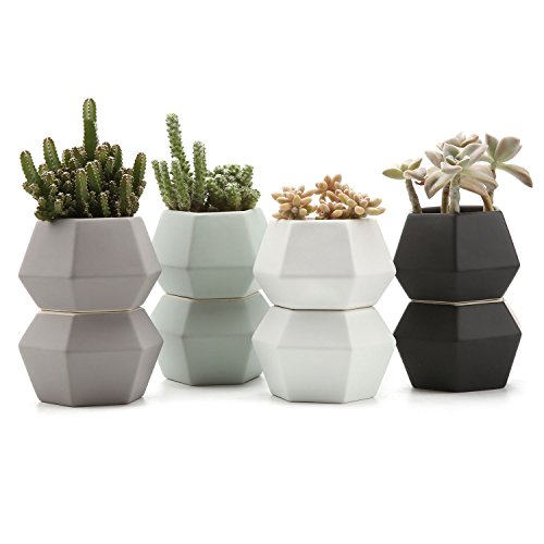 JynXos 4 Inch Ceramic Hexagonal Pattern Semi-Luster Surface succulent Plant Pot/Cactus Plant Pot Flower Pot/Container/Planter Full colors Package 1 Pack of 8 by JynXos