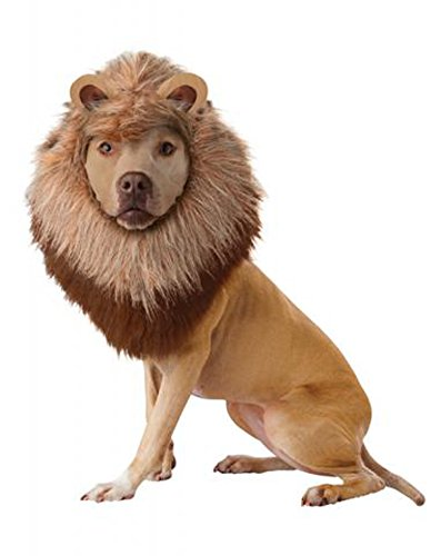 California Costume Collections Animal Planet Lion Dog Costume, (Animal Planet Halloween Costumes For Dogs)