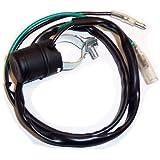 Amazon com: ElectroSport ESC1631 Stator Honda CR80: Automotive