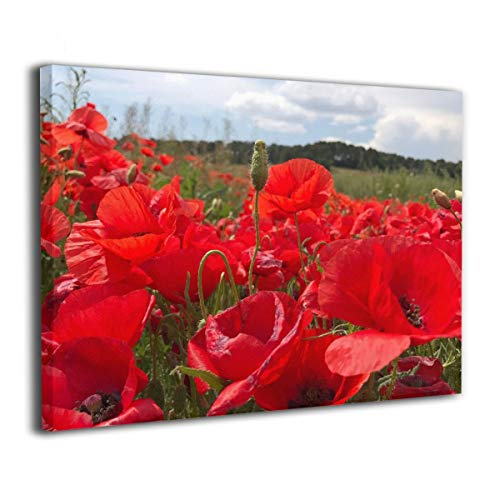 Lureu Poppies Field Ruby Red Poppy Meadow Canvas Wall Art Prints,Framed Picture Photo Painting Giclee Artwork,Modern Gallery Home Decor Ready to Hang 24