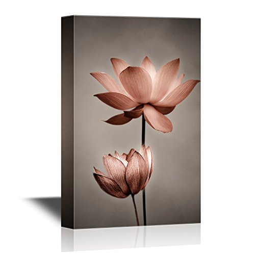 wall26 Canvas Wall Art - Closeup of Lotus Flower - Gallery Wrap Modern Home Decor | Ready to Hang - 12x18 inches