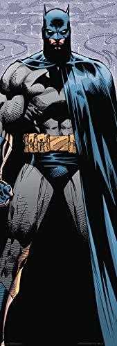 Trends International Door - Batman Wall Poster, Multi]()