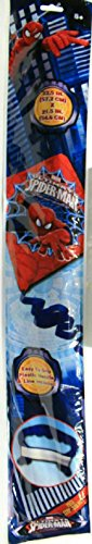 22.5 Inch Children's Character Kite Spiderman