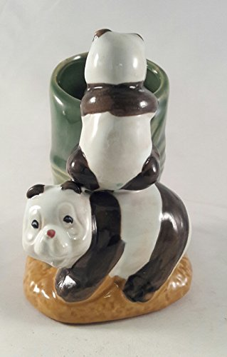 lucky bamboo - Panda- 4'' vase Unique From Jm Bamboo