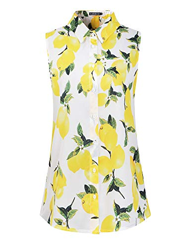 Luckco Womens Sleeveless Floral Printed Chiffon Casual Blouse Shirts Tops (XX-Large, FL-6) (Classic Pleats Blouse)