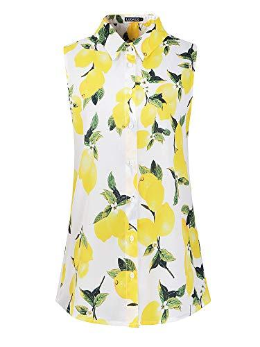 Luckco Womens Sleeveless Floral Printed Chiffon Casual Blouse Shirts Tops (Medium, FL-6)